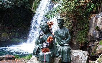 河津七滝(かわづななだる)