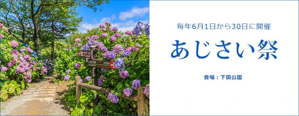 下田あじさい祭