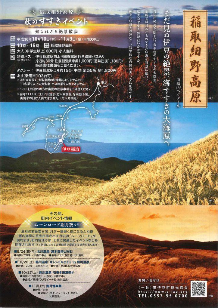 稲取細野高原のすすきが見頃です。