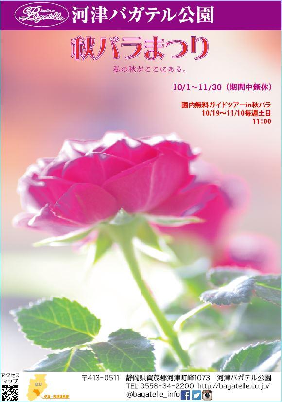 河津バカテル公園【秋バラまつり】